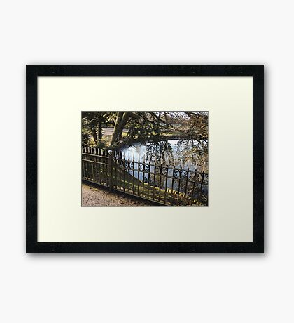 Life Forms Illogical Patterns Framed Print