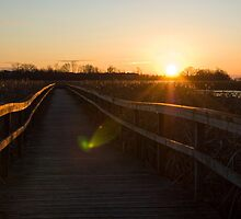 Lens Flare Morning Light Sunrise Over Wood Pier in Marsh Fine Art Landscape Photograph by jocelynsart