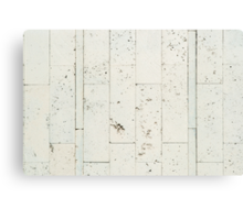 Texture limestone wall tiles Canvas Print