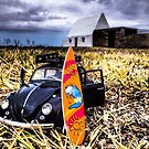 Surf bug by Gary Power