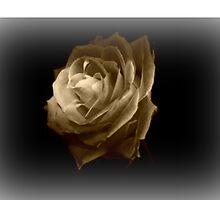 """Vintage Rose"" Digital Art Print / Avalon Media by avalonmedia"