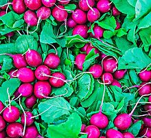 Food - Fresh radish vegetables by luckypixel