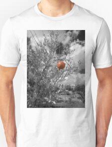 Pomegranate T-Shirt