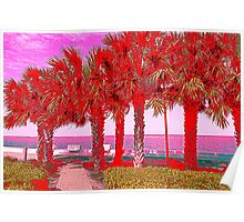 Palm Trees in Red Poster