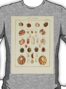 Neues systematisches Conchylien-Cabinet - 064 - Revifen Bafellen T-Shirt