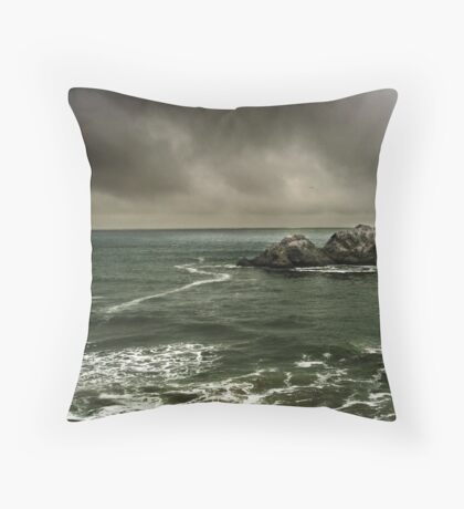 Weathering the Storm Throw Pillow