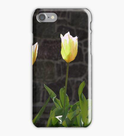 Porcelain Shades iPhone Case/Skin