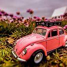 Flower camper 3 by Gary Power
