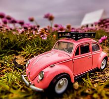 Flower camper 3 by Gary Power