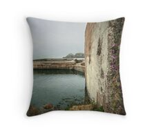 Beauty in the Ruins Throw Pillow
