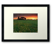 Dandy Sunset Framed Print