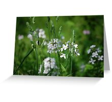 Beyond the grass Greeting Card