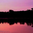 Dawn at Oak Creek by Hope Ledebur