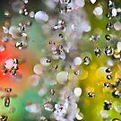 Cristals by Luca Renoldi
