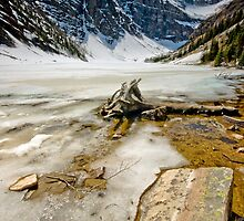 Lake Agnes by dsphotography