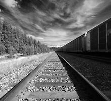 Canadian Rockies Railway by dsphotography