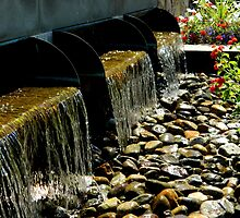 Babbling Brook   ^  by ctheworld