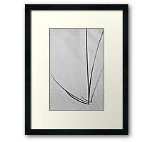 The dunes Framed Print