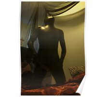 Zentai Through the Looking Glass 13 Poster