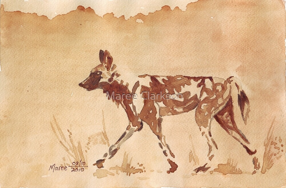 Painted Dog - African Wild Dog by Maree  Clarkson