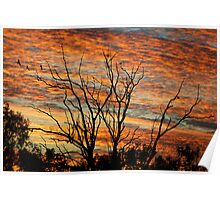 Sunrise Splendour - Gunnedah NSW Australia Poster