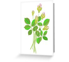 Five Rose Buds Greeting Card