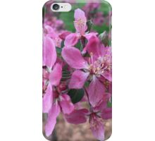 Floral Delight iPhone Case/Skin