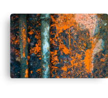 Colored rust metal Canvas Print