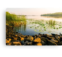 View of the Dniper River at morning Canvas Print