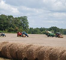 Tractors x3 by Ann Starzynski-McNeil