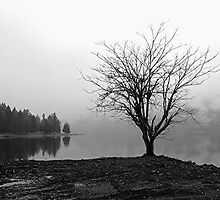 Alone by Paul McKinnon