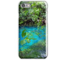 Manatee Springs iPhone Case/Skin