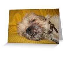 Sleepy....Soooo sleeeepy.... Greeting Card