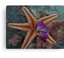 Never Forgotten, star fish art, inspirational wall decor Canvas Print