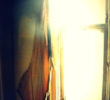 Blinding Light by Devan Abernathy