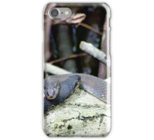 Snake Love iPhone Case/Skin