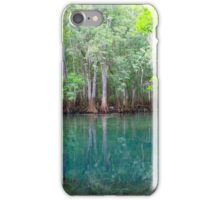 Cypress Beauty iPhone Case/Skin