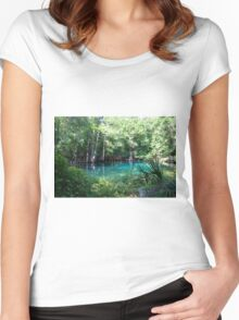 Spring Fever Women's Fitted Scoop T-Shirt