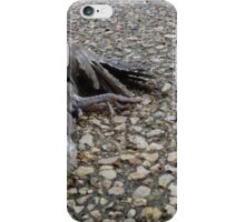 Flying Rat Bird Without Head n°6 iPhone Case/Skin