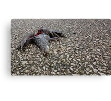 Flying Rat Bird Without Head n°6 Canvas Print