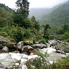 Thadokoshi Downstream by Richard Heath
