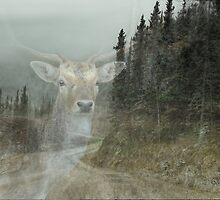 Forest Dweller by Dyle Warren