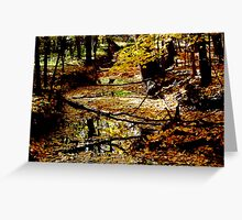 Majestic Forests Greeting Card