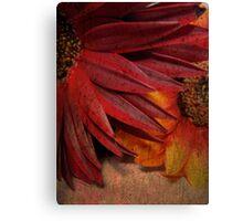 Textured Petals Canvas Print