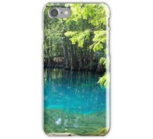 Fresh Water Fun iPhone Case/Skin