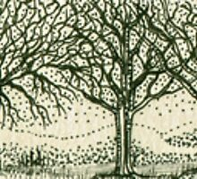 Tree Line by Catherine  Howell