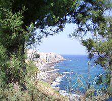 Mediterranean Coast of Sicily  by grammy