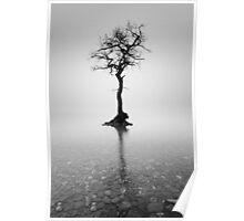 Loch Lomond Tree in the mist Poster