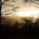 Dawn by Lois  Bryan