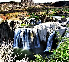 Shoshone Falls  by Visual   Inspirations